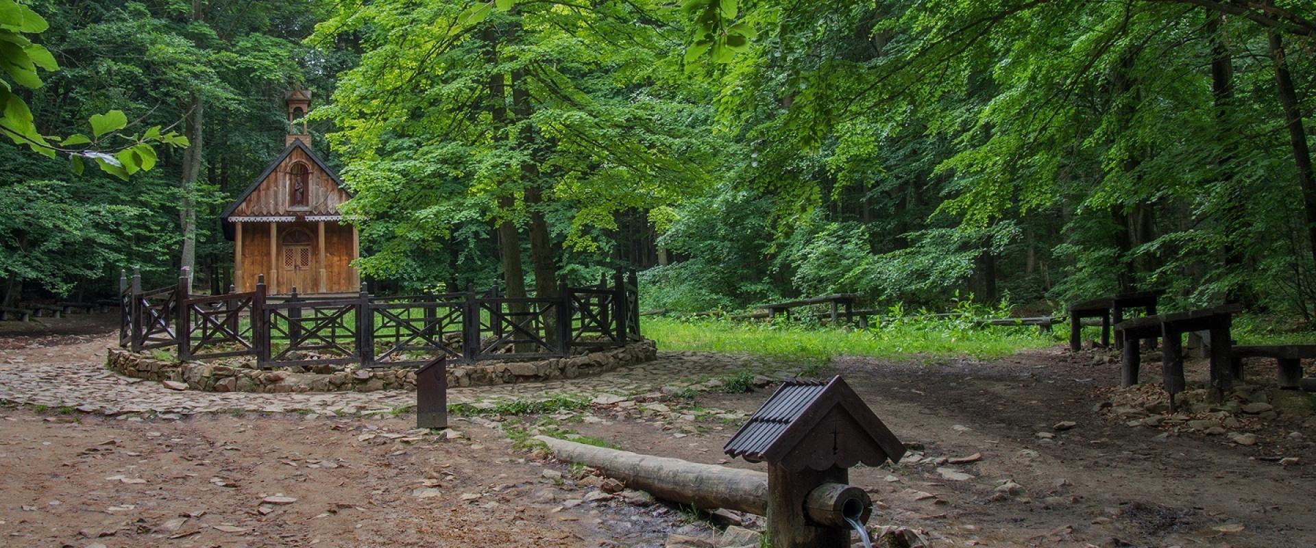 Świetokrzyski National Park