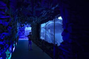Oceanarium - wnętrze