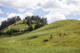 Góra Cisowa na Suwalszczyźnie