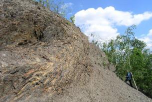 Góry Pieprzowe koło Sandomierza - wychodnia łupków kambryjskich
