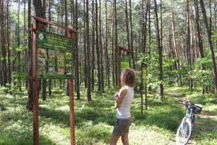 Na leśnej ścieżce dydaktycznej