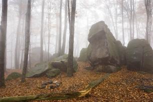 Pomnik przyrody Skałki na Bukowej Górze k. Bodzentyna
