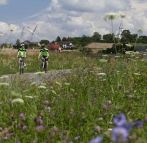 The Suchedniowsko-Oblęgorski Landscape Park – Primeval Forest and Industrial Heritage