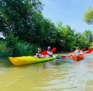 Spływy kajakowe w Bałtowie