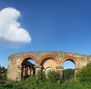 Ruiny walcowni w Nietulisku Dużym