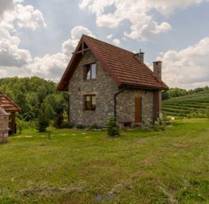 Górski Ogród Paweł Poniewierski