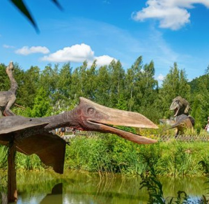 Wyloguj się na Majówkę w Bałtowskim Kompleksie Turystycznym