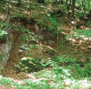 Góra Żakowa