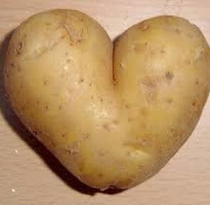 Roasting potatoes on St. Teklas's day