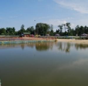 Kąpielisko Sędziszów (dostępne 01.07. - 31.08.)