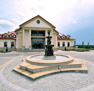 Pałac w Konarach***