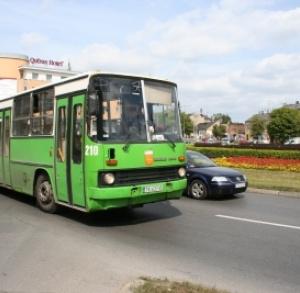 Municipal Transport in Kielce