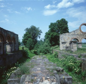 Traces of Technical Monuments of Kamienna Valley