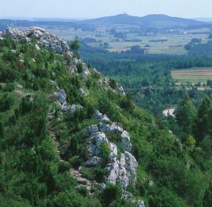 Mt Miedzianka – Nature Reserve