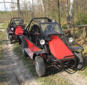 Buggies and Quads Rental
