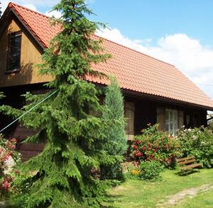 Chata pod Lasem (Cottage near the Woods)