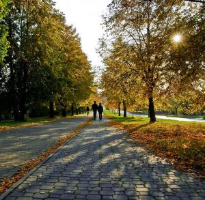 Szlaki piesze po Kielcach - niebieski