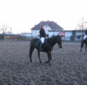 MAAG Equestrian Centre of Hippotherapy