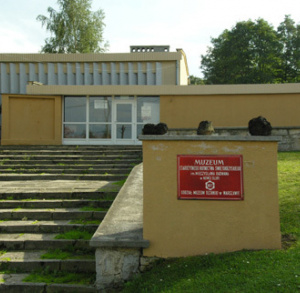 Muzeum Starożytnego Hutnictwa im. Mieczysława Radwana ( obiekt w remoncie )