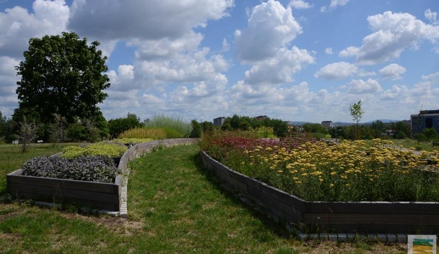 Ogród Botaniczny w Kielcach zaprasza do zwiedzania!