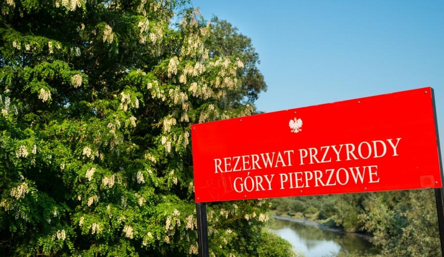 Rezerwat Góry Pieprzowe