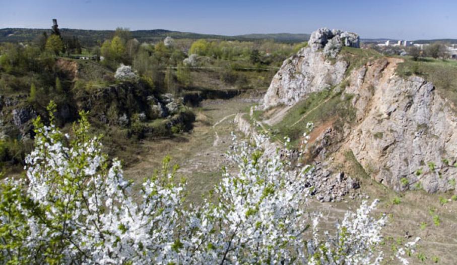 Wiosna na Kadzielni