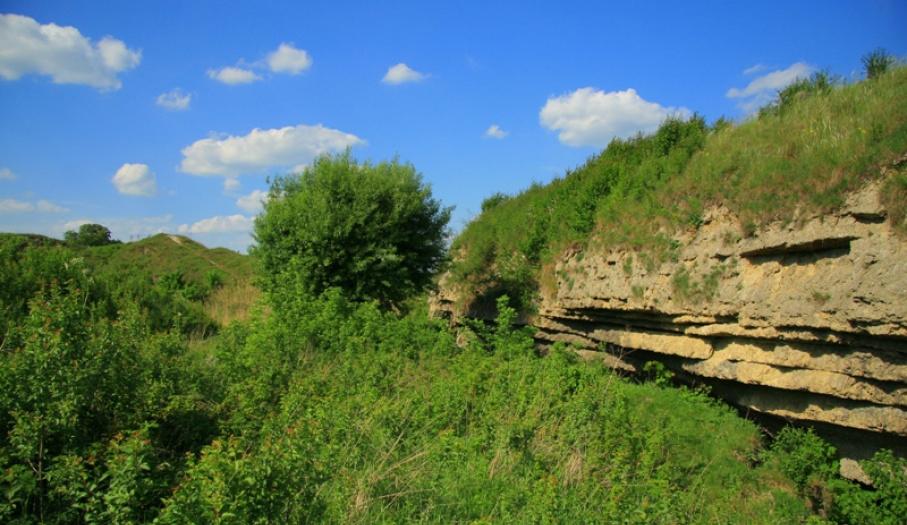 Skorocice Reserve in Nadnidziański Landscape Park