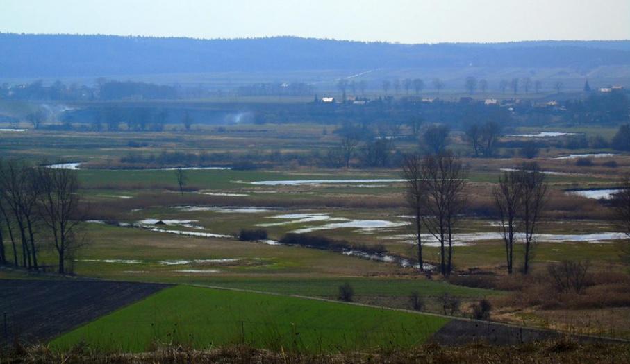 Nadnidziański Landscape Park