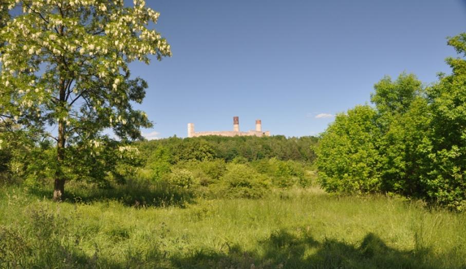 Castle in Chęciny
