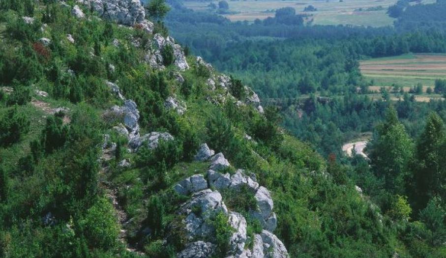 Widok na zamek w Chęcinach