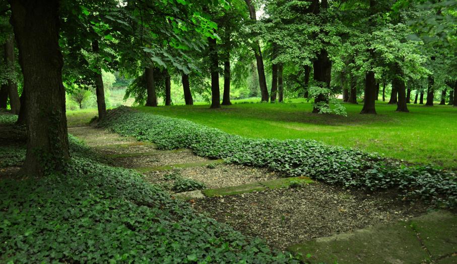 Park krajobrazowy
