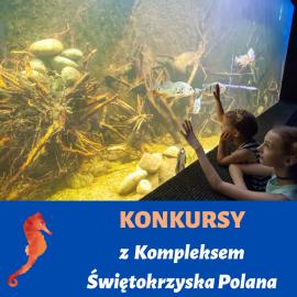 Konkursy z Kompleksem Świętokrzyska Polana