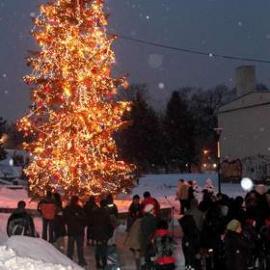 Choinka w Kielcach już świeci